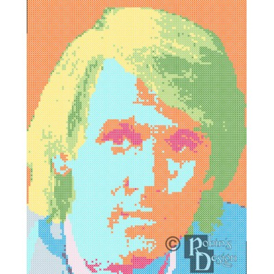 The Fifth Doctor Cross Stitch Pattern PDF