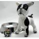 Tache the French Bulldog Doll 3D Cross Stitch Animal Sewing Pattern PDF Download