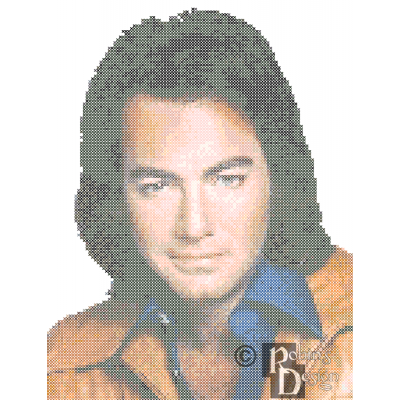 Neil Diamond Cross Stitch Pattern PDF